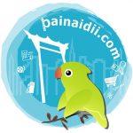 แนะนำเว็บไซต์ painaidii.com